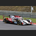 thumbnail Tung / Jarvis / Laurent, Oreca 07 - Gibson, Jackie Chan DC Racing